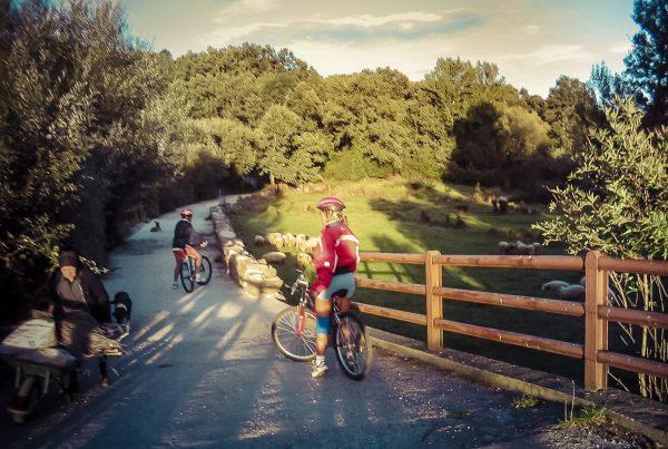 rutas en bicicletas de montaña