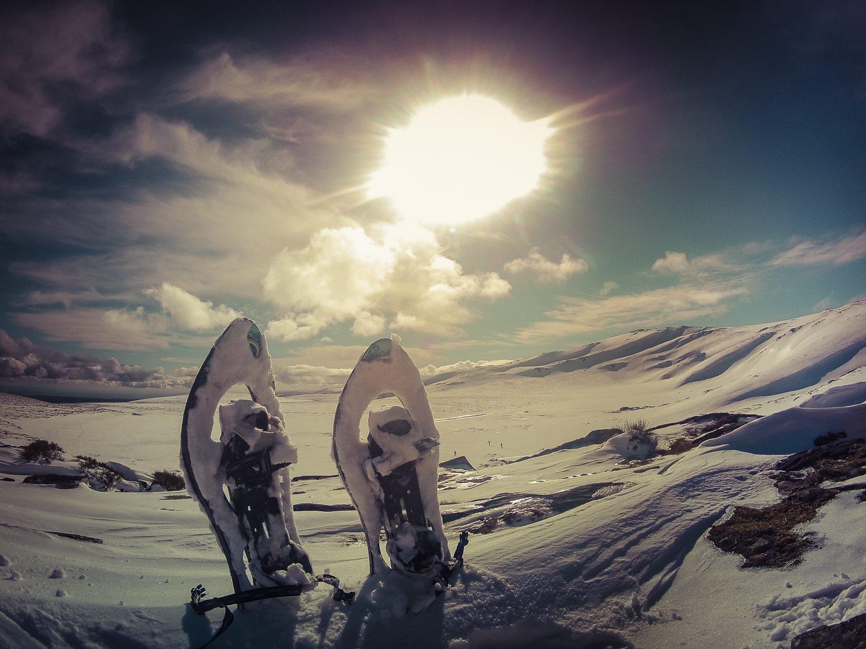 aventura en la nieve, zamora